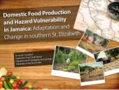 Domestic food production and hazard...
