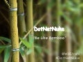 DotNetNuke: Be Like Bamboo
