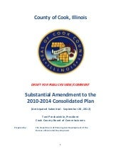 Draft Substantial Amendment 2010-20...