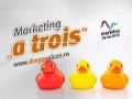 "Marketing ""a-trois"" - client, agentie si consultant"