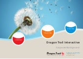 Dragon Trail Interactive Corporate ...