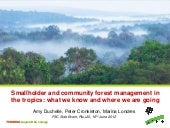 Smallholder and community forest ma...
