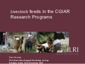 Livestock feeds in the CGIAR Resear...