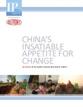 China's Insatiable Appetite for Cha...