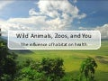 Wild Animals, Zoos, and You: The Influence of Habitat on Health (John Durant)