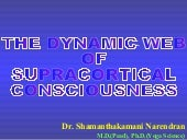 Dynamic web of supracortical consci...