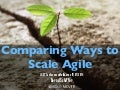 Comparing Ways to Scale Agile at LAST Conference 2014