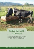 Eadd: Feeding Dairy Cattle in East Africa