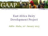 EADD GAAP Presentation January 2013