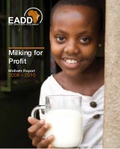 Eadd mid term report 2008 2010