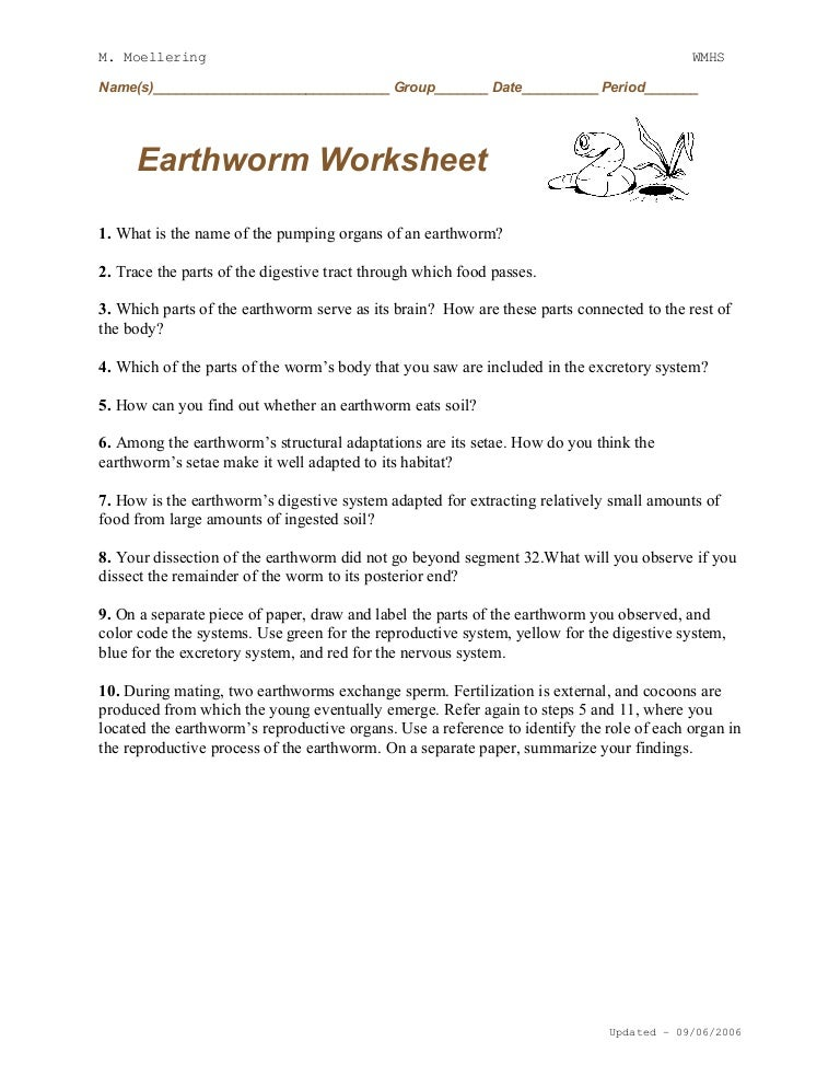 Earthworm Dissection Worksheet
