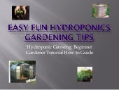 Easy Fun Hydroponics Gardening Tips