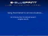 search engine optimisation - e-blue...