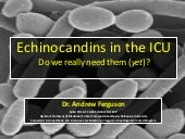 Echinocandins in the ICU