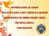 Piso Tropical Oriental