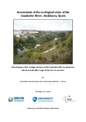 Ecological assessment of guadalete ...