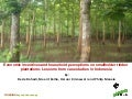 Economic incentives and household perceptions on smallholder timber plantations lessons from case studies in Indonesia