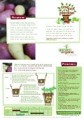 Potatoes - Organic Growing Guides for Teachers