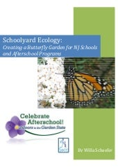 Creating a School Butterfly Garden