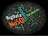Big Data & NoSQL - EFS'11 (Pavlo Ba...