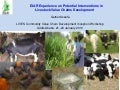 EIAR experience on potential interventions in livestock value chains development