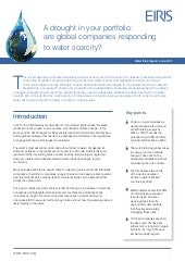Eiris water risk report 2011