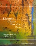 Electric chair for the sun