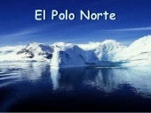 El polo norte