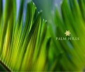 Emaar Mgf Palm Hills :: Gurgaon :: ...