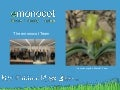 Introduction to eMonocot (Dave Simpson)
