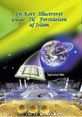 En Kort Illustreret Guide Til Forst...