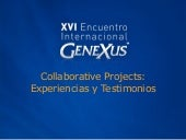 Encuentrogx2006collaborativeproject...