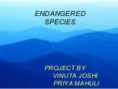 Endangered Species By Vinuta & Priya