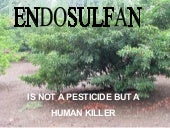 Endosulfan is not a weed taker but ...
