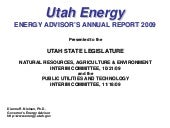 Energy Advisor Annual Report