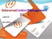 Enterprise  Content  Management ( E C M)(1)
