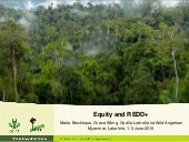 Equity and REDD+: Perspectives from CIFOR's global comparative study