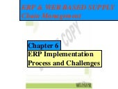 ERP Implementation Processes and Ch...