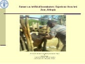 Farmers as Artificial Inseminators:...