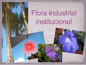 (album virtual) Flora Industrial In...