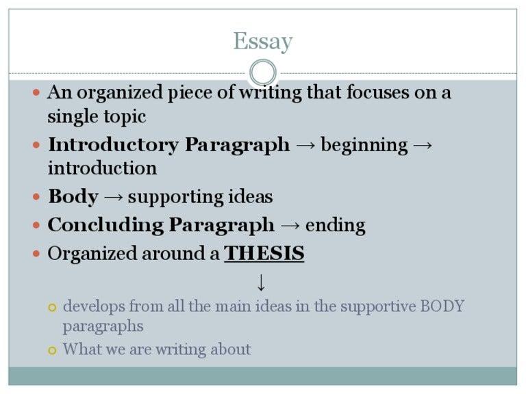 brain essay - Template