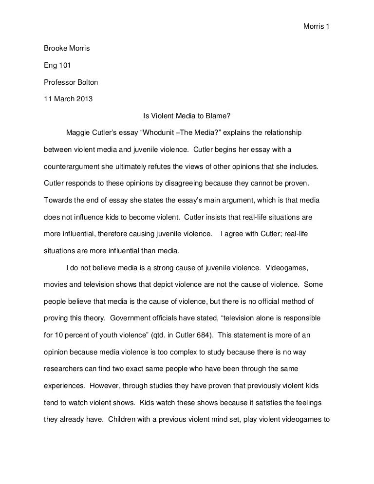 Diversity internship essay sample