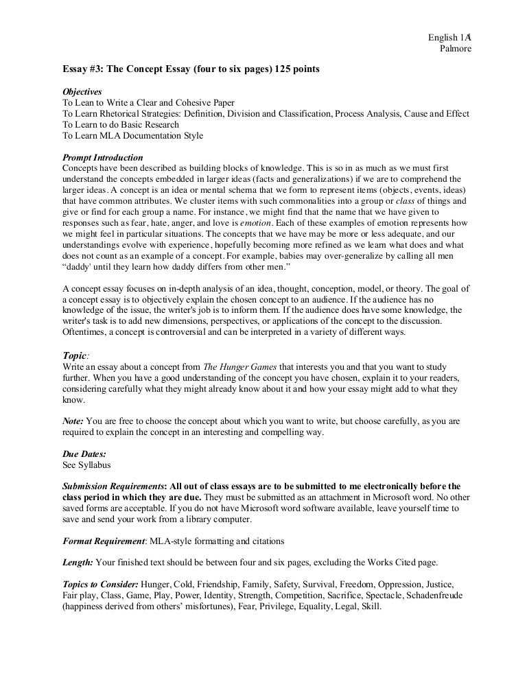 How to be fashibal on a budget essay