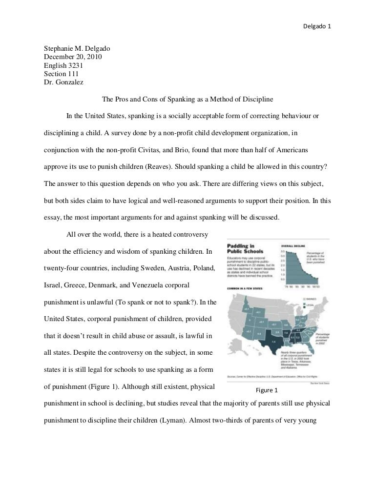 Cultural Anthropology Interview Essay Format - Essay for you