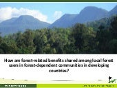 How are forest-related benefits shared among local forest users in forest-dependent communities in developing countries?