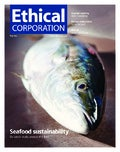 Ethical Corporation May 2013 cover and contents