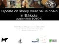 Update on sheep meat value chain in Ethiopia