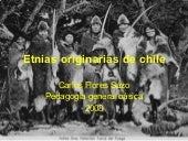 Etnias Originarias De Chile