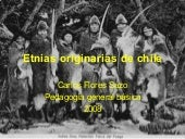 Etnias originarias-de-chile-1224038...