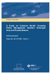 European commission report 2013
